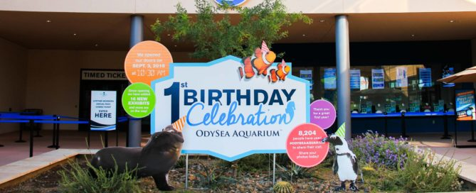 OdySea Aquarium Happy Birthday Sign Printed by Artisan Colour