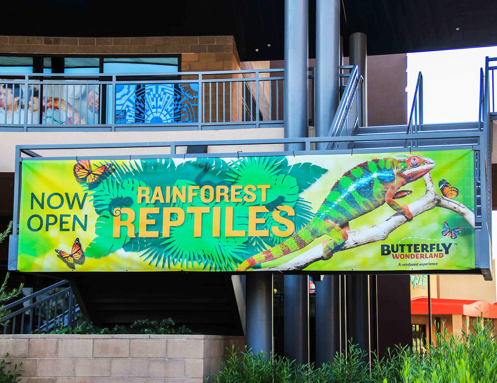 Large Outdoor Banner Promoting OdySea Rainforest Reptiles Event
