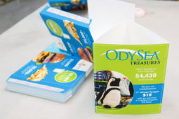 OdySea Standing Triangle Table Tents Sales Collateral Printing Process
