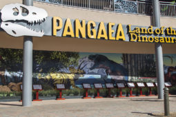 Pangaea Sign Commercial Graphics Project