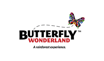 Butterfly Wonderland: A Rainforest Experience