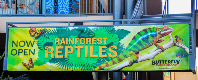 Rainforest Reptiles Event Outdoor Banner